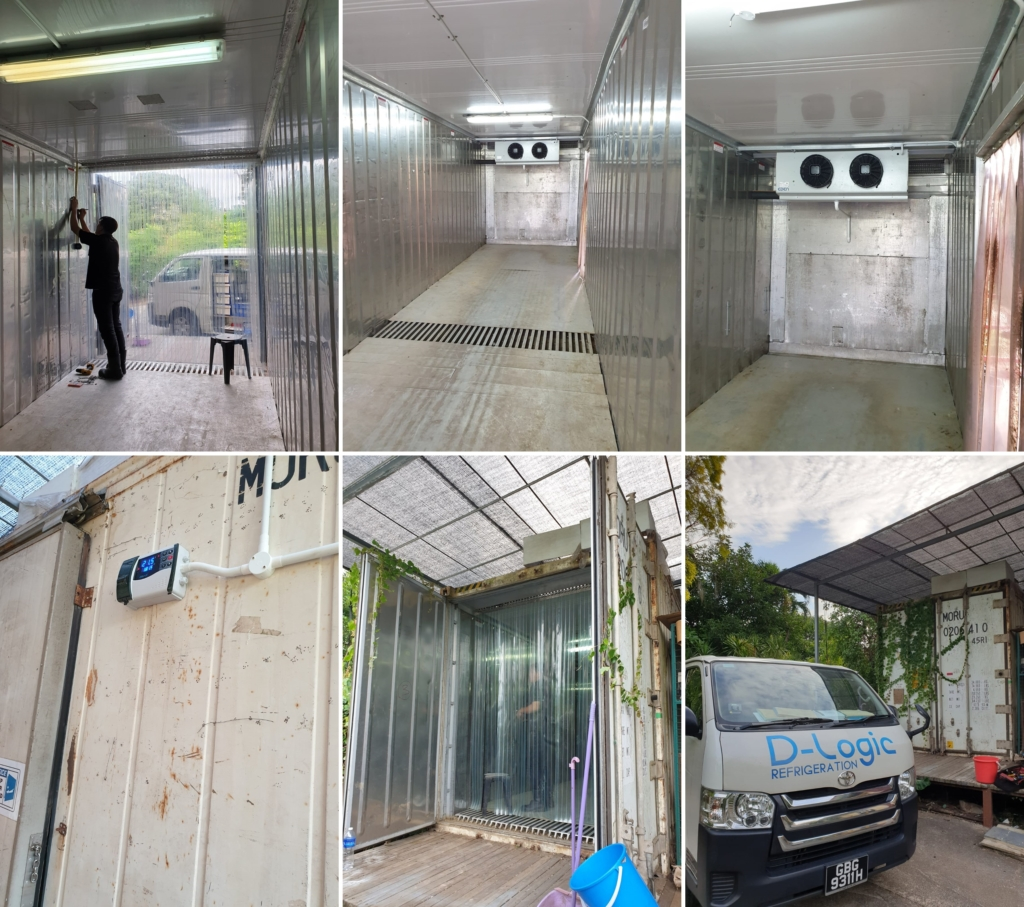 Installing a New Refrigeration System in a Reefer Container, CReating a New Cold Room for Flowers and Plants